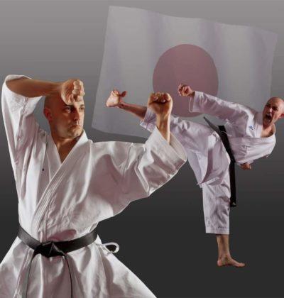 Vincenzo Ippolito Karate Bergamo Staff